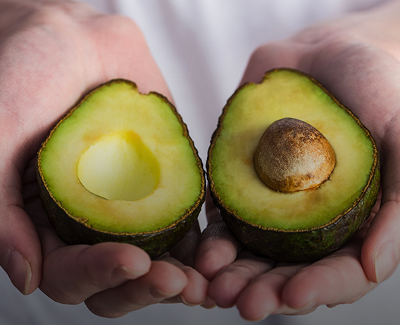 Abacate, quais os benefícios para a perda de peso